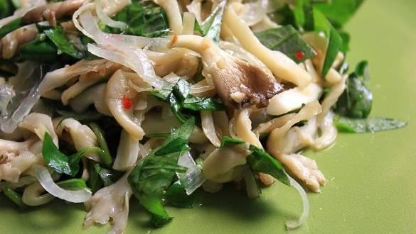Salata de ciuperci Pleurotus